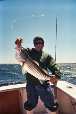A great striped bass caught with Bluefin Charters